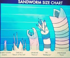 Sandworm Size Chart Rachel Hale