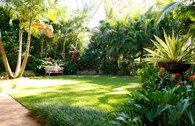Small Picture Tropical Garden Design The Palm Place Nursery