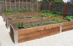 garden beds. karri garden beds, 60cm high beds t