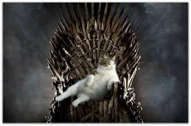 Картинки по запросу кот на троне