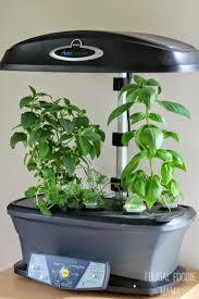 aero garden com. Why You Need An #AeroGarden (Product Review) + A 20% Off Discount Aero Garden Com