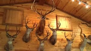 world s best animal trophy room over 100 heads