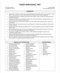 Construction Assistant Project Manager Resume Resume Examples For Project Manager Resume Summary Examples