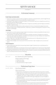 Business Analyst Resume Examples Template