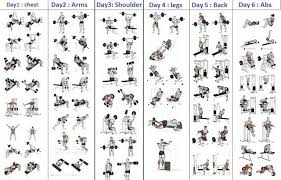 Chest Chart Gym 5 Day Workout Routine For Man Gym Workout Chart Workout