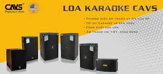 Các dòng loa karaoke nhập khẩu chính hãng tốt nhất hiện nay cho gia đình