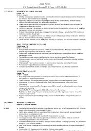 Workforce Analyst Resume Samples Velvet Jobs