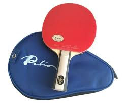 table tennis bats. palio expert 2 table tennis bat \u0026 case bats r