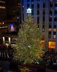 rockefeller center tree facts what to know about 2016 s icon hollywood life