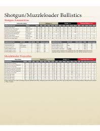 20 Gauge Ballistics Chart Standard Ballistics Chart Free Download