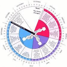 Ovulation Chart 28 Day Cycle Bedowntowndaytona Com
