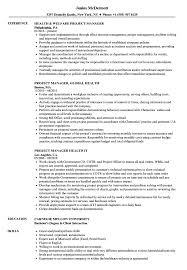 Cannabis Resume Example Health Project Manager Resume Samples Velvet Jobs 4