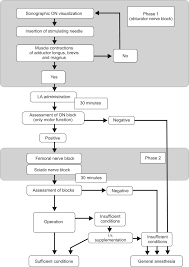 Sciatic Nerve Flow Chart Korean Journal Of Anesthesiology