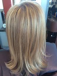 highlighting gray hair choice image hair extensions for short hair