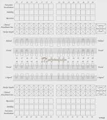 Dental Chart Template Charting Form Tooth Throughout Forms