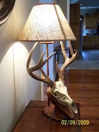 home european deer mounts