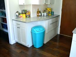 pet proof garbage cans dog kitchen trash can best for dogs breaking by th best dog proof