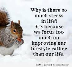 Life Stress Quotes Interesting Quotes About Stressful Life 48 Quotes