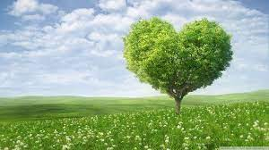 Love Nature Wallpapers HD - Wallpaper Cave
