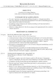 Financial Business Analyst Resume Investment Analyst Resume
