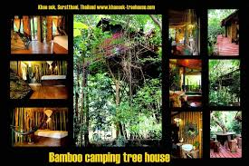 Khao Sok Accommodation Baan Khao Sok ResortKhao Sok Treehouse