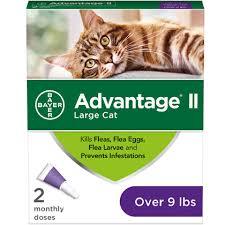 Advantage Dosage Chart For Cats Advantage Ii 2 Pk Cat Over 9 Lbs