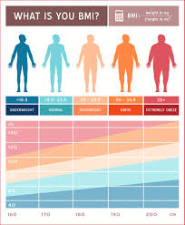 Awesome Female Weight Chart Resume Pdf