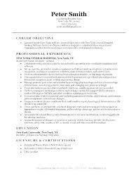 Nursing Resumes Magnificent Rn Resume Samples Nurses Resume Examples Example Of Nursing Resume