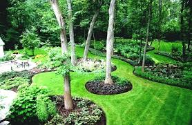 how to landscape around a tree how to landscaping around trees ideas for gardens under palm tree landscape drawing