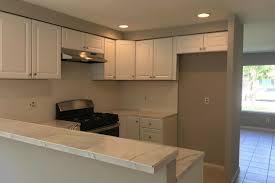 Kitchen Remodel Contractors Painting New Design