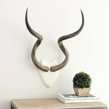 kudu white brown antlers wall mount