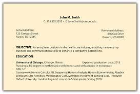 Babysitter Resume Objective Samples Of Resume Objective Blank
