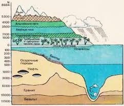 Биосфера и свойства биомассы планеты Земля Биология Пределы жизни в биосфере