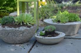 picture of rustic chic diy concrete planters