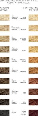 Hair Colour Level Chart Contributing Pigment Chart Hair Hair Color Hair Color