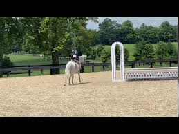 Olivia Sweetnam and On Your Mark 2020 Virtual Pony Finals - YouTube