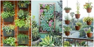 how to plant a flower garden. How To Plant A Vertical Garden Flower
