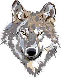 Image result for timberwolves clipart