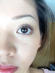 shiseido eyelash curler vs shu uemura. shu vs. shiseido eyelash curler vs uemura