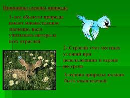 Слайд Человек природа охрана окружающей среды Марта  С 1948г работу по охране направляет Международный союз охраны природы
