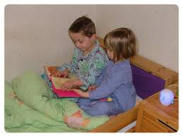 essay on pleasure of reading in which i take most pleasure in hindi essay on pleasure of reading