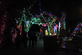 Zoo Lights Tucson Motel Miguel Reid Park Zoo Lights