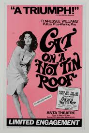 thnoc » drawn to life  al hirschfeld and the theater of tennessee    window card for  lt i gt cat on a hot tin