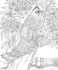Small Picture Hard Landscape Coloring Pages Coloring Pages