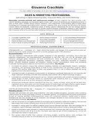 Enchanting Inside Sales Representative Resume Format Pattern