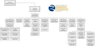 Creative Agency Organizational Chart Bedowntowndaytona Com