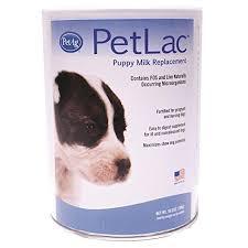petlac milk