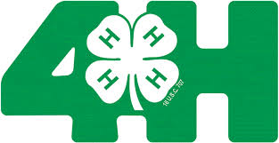 Image result for 4-H certificates clip art