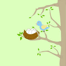 bird nest with eggs clipart. Fine Bird A Tree With A Bird Nest Eggs And Mother Perching On Branch Intended Bird Nest With Eggs Clipart D