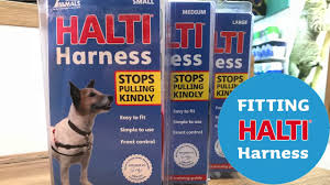 Petstop Sizing And Fitting Halti Harness